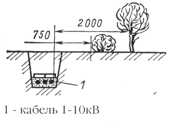 Прокладка кабельных линий параллельно насаждениям
